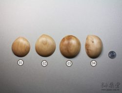 陶藝工具PT16 木拋光板pottery_Throwing_Disc_05_03